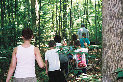 Summer Camp Nature Hike